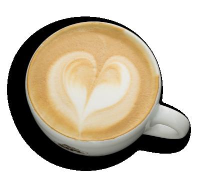 Cappuccino XL